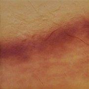 Jesienny Lisc/Autumn Leaf 5470 Универсальная плитка 30,0х30,0х0,9 Rustic Структурная
